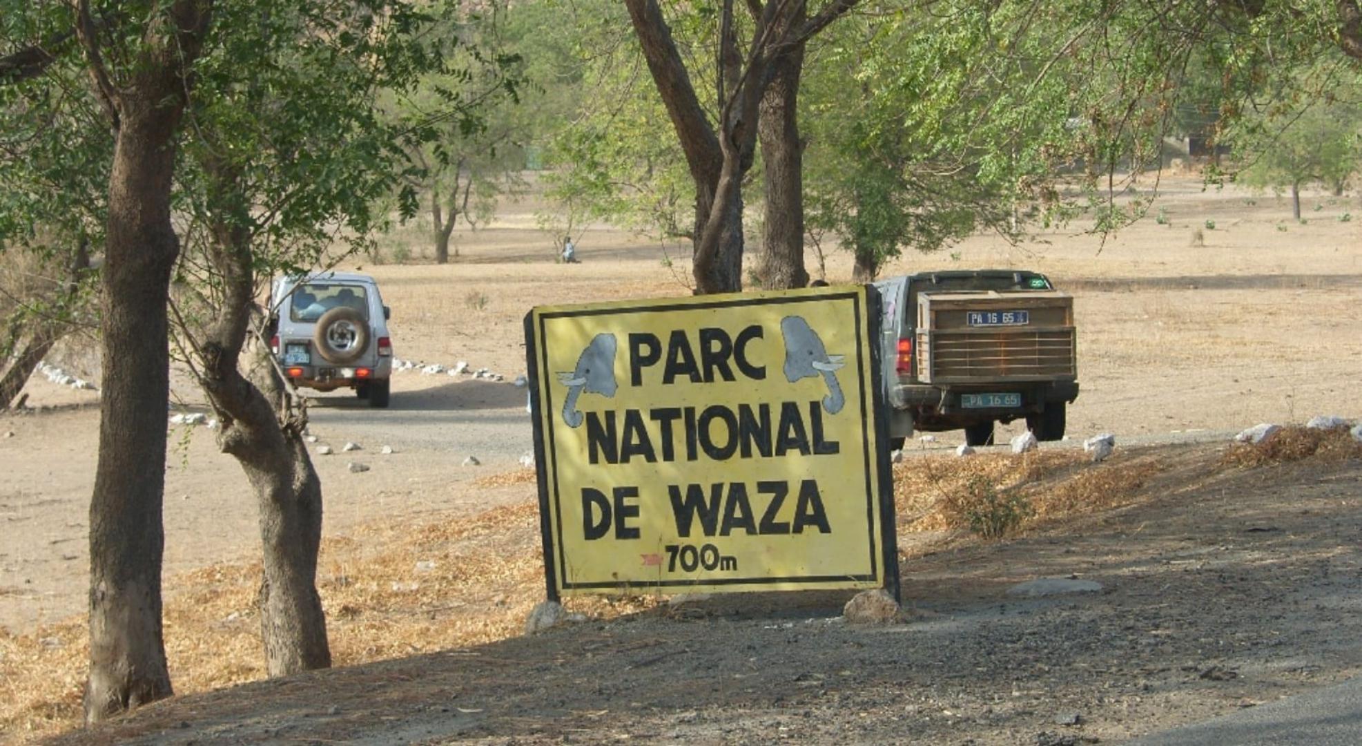 Vers la création d'une radio communautaire dédiée à la protection de la réserve de Waza
